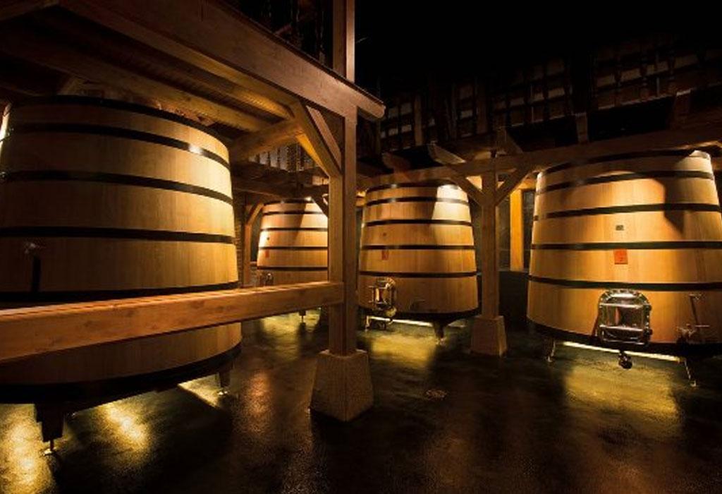7 bodegas que debes de visitar en Rioja, España - bodegas-izadi