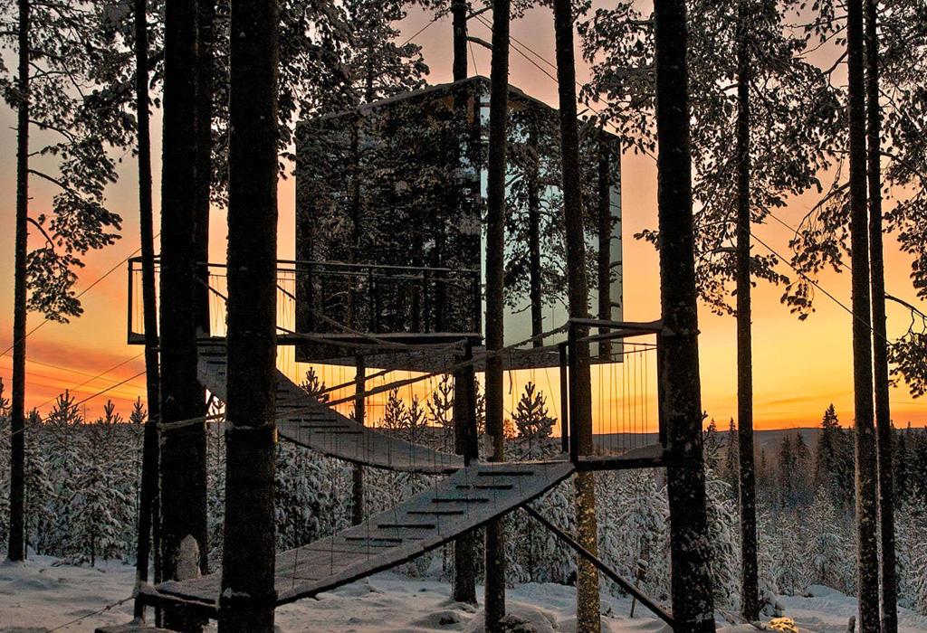 Las mejores casas de árbol alrededor del mundo que podrás rentar - luleatreehouse