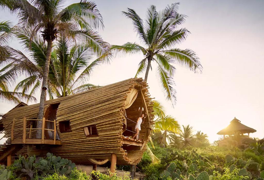 Las mejores casas de árbol alrededor del mundo que podrás rentar - playavivatreehouse