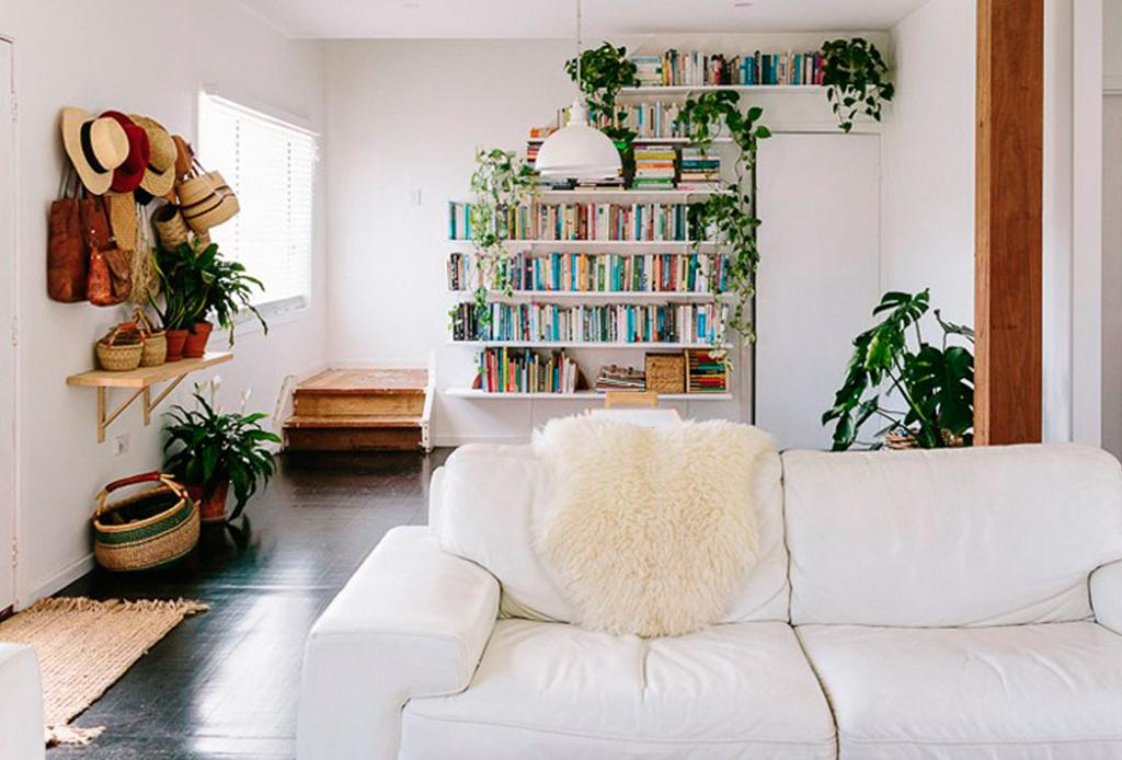 Decorar tu casa con plantas tiene más beneficios de los que te imaginas - respiras