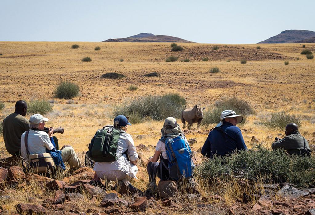 Esta es la solución para hacer realidad todos los viajes que quieres hacer - safari