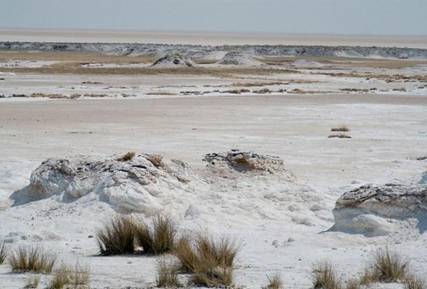 Estos son los mejores espejos de sal alrededor del mundo - etosha-1024x694