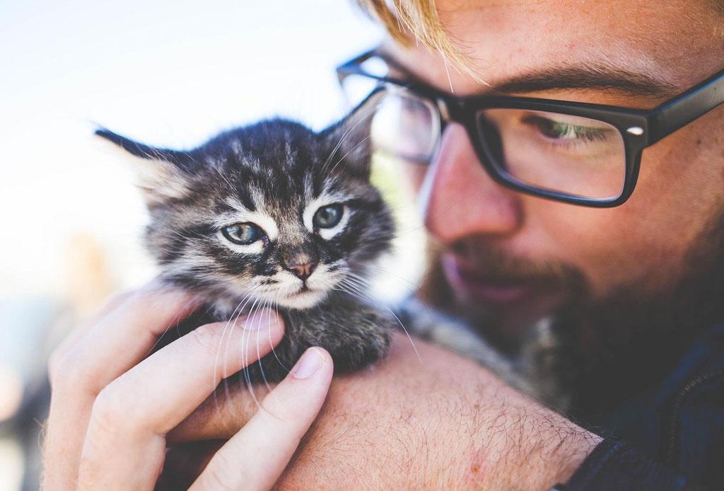 ¿Sabes cuál es la diferencia entre las personas que prefieren a los gatos o a los perros? - persona-gato-o-perro-2