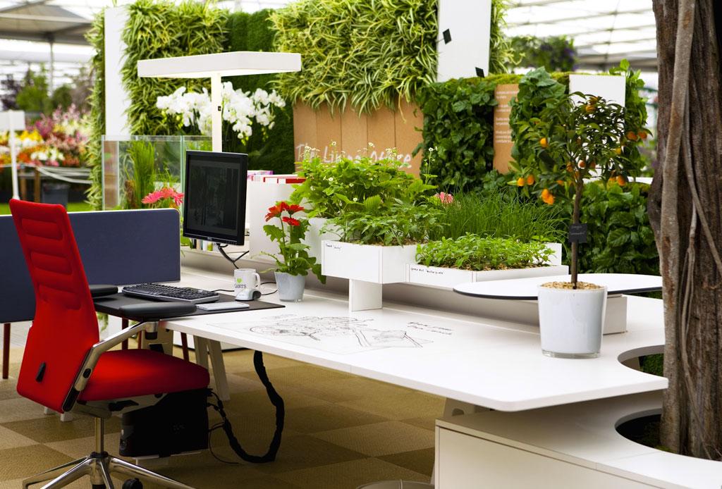Biofilia: la tendencia de decorar tu lugar de trabajo con naturaleza para mejorar la productividad - biofilia-decoracion-oficina-1
