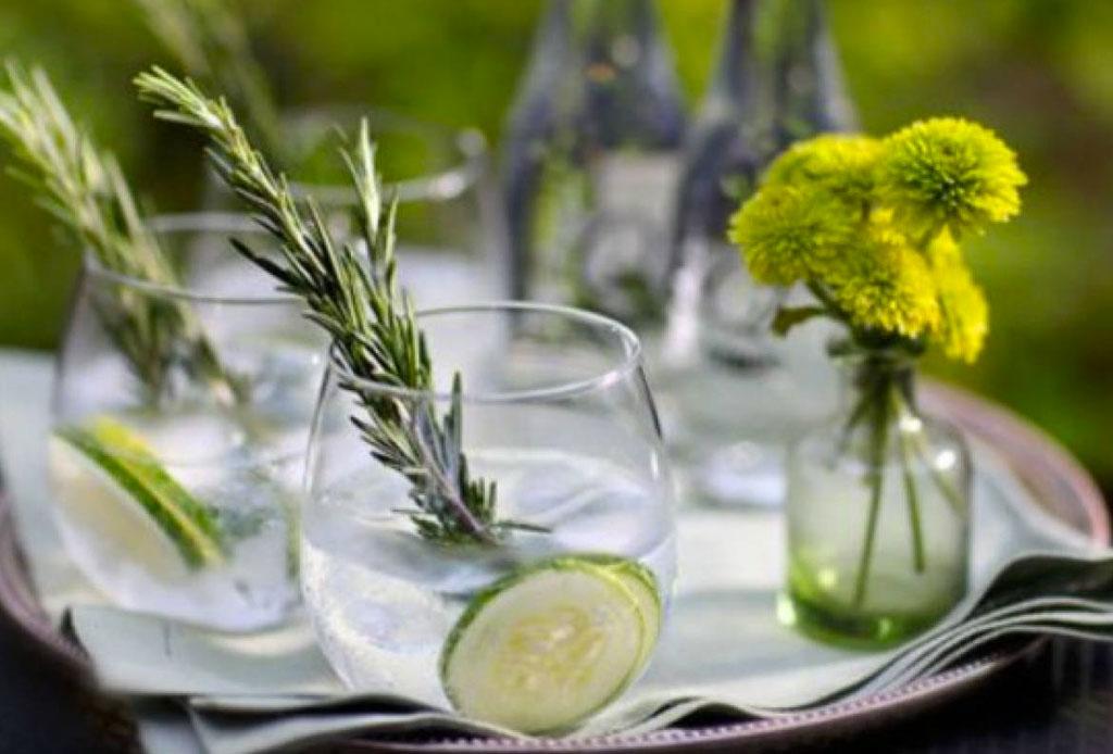 ¡Haz gin & tonic de sabores! Aquí te compartimos tres recetas facilísimas - gin_tonic_2