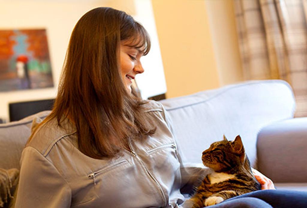 Características que indiscutiblemente amarás de un gato como mascota - gatos-traductor-1024x694