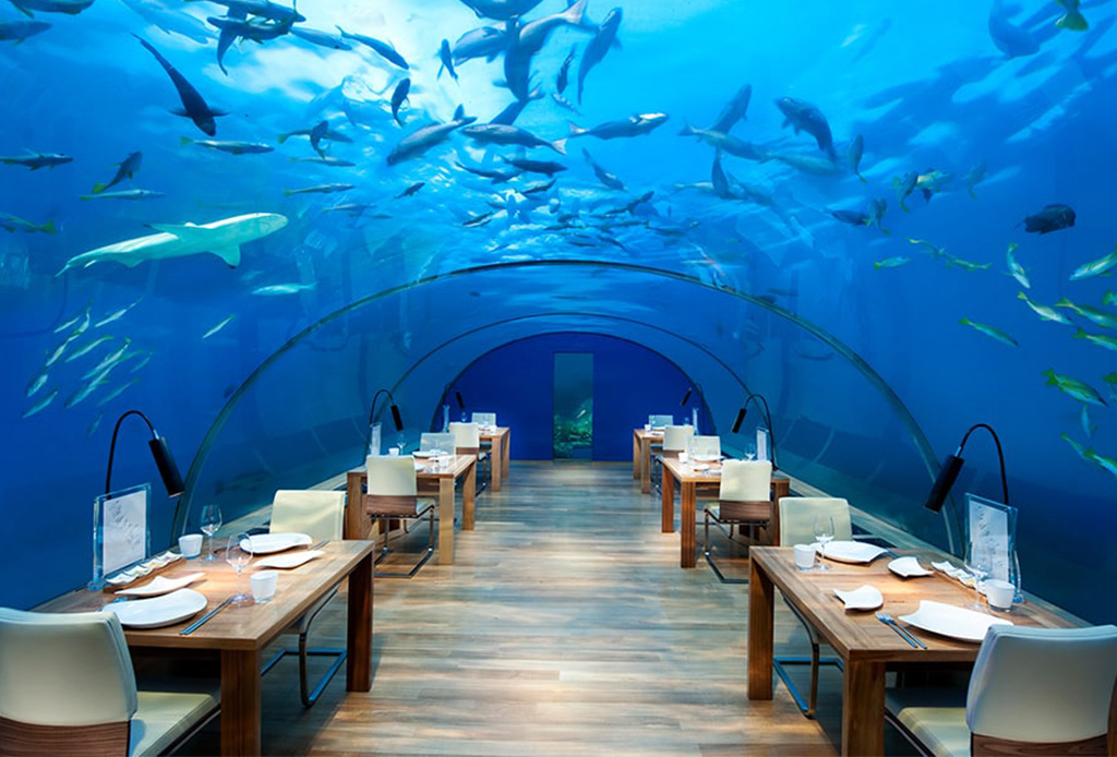 Conoce el primer resort que estará bajo el agua - bajoelmar1