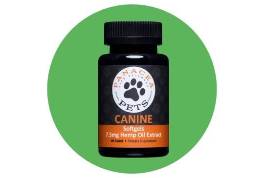Un laboratorio desarrolló tratamientos con hemp para aliviar el dolor de perros con cáncer - panaceapets-300x203