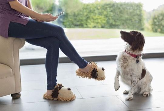 ¿Crees estar obsesionado con tu perro? ¡Checa cuántas cosas de esta lista haces! - senales-obesionado-perro-in-good-way-7-300x203