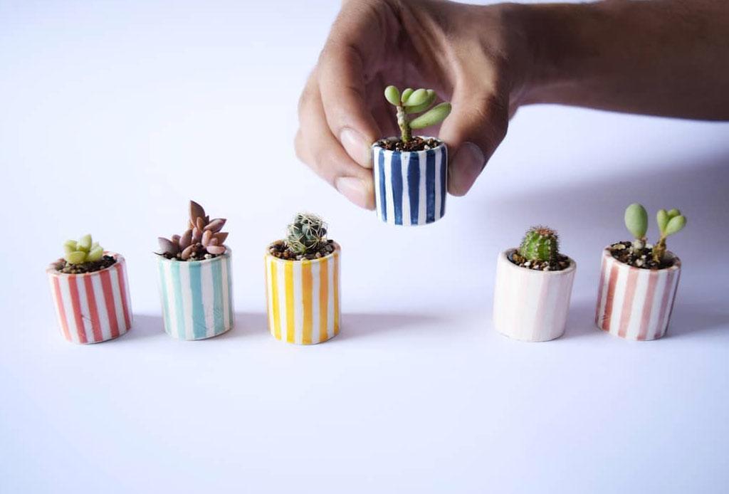 No podrás resistirte a estas macetas miniatura