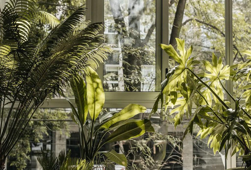 """Hospédate en """"Casa Teo"""", la increíble residencia creada por Enrique Olvera - casa-teo-enrique-olvera-airbnb-2"""