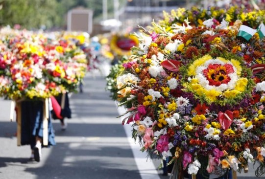 ¡Visita estos festivales de flores alrededor del mundo que te encantarán! - festivales-de-flores-en-el-mundo-5-300x203