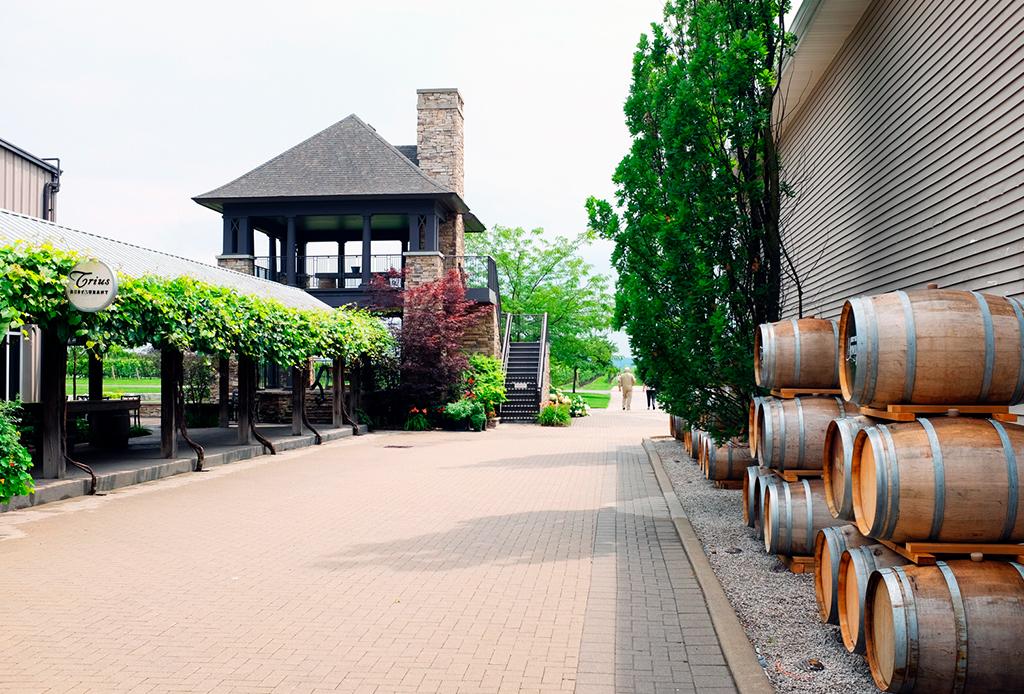 Bodegas de vino y cervecerías artesanales que debes visitar en la región de Niágara - vincc83edosniagara6