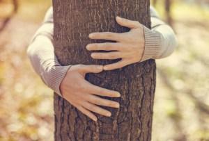 ¡Es un hecho! Abrazar árboles es bueno para tu salud