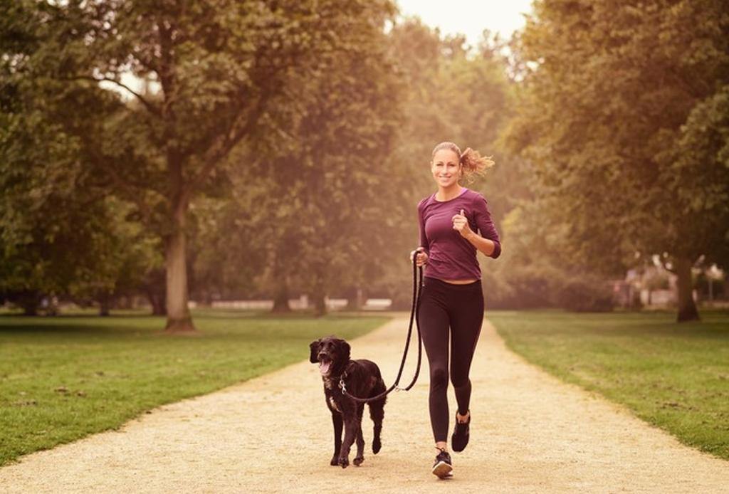 Dog Running Mx - correr-con-tu-perro