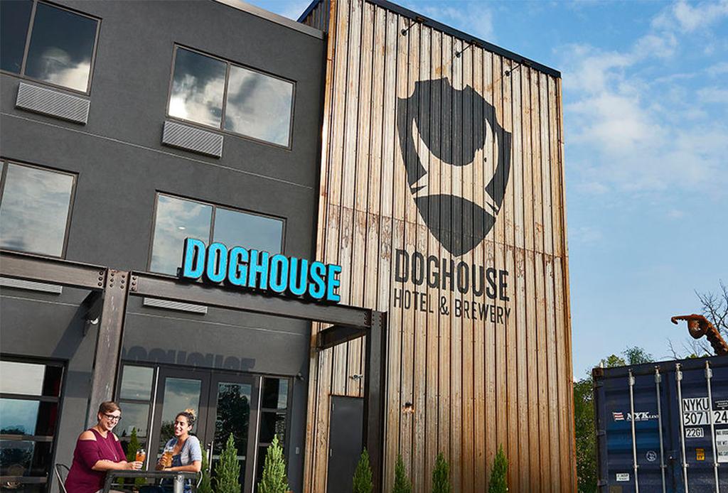 Así es DogHouse, el primer hotel para amantes de la cerveza
