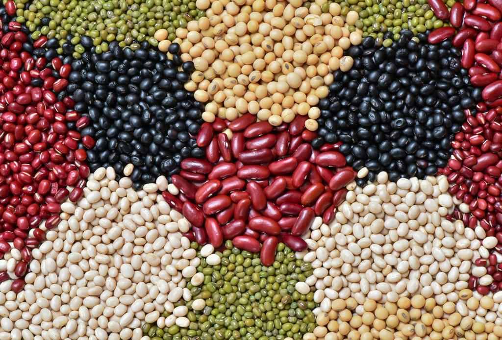 Así puedes reemplazar tus proteínas animales por veganas - proteinas-veganas-3