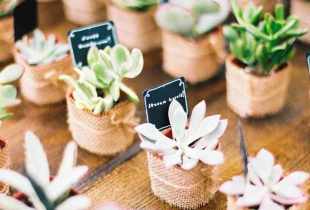 ¡Adiós a los típicos recuerdos de las bodas! Sorprende a tus invitados con estos originales detalles - plantas-1024x694