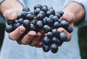 Qué es el vino natural y porque tienes que conocerlo