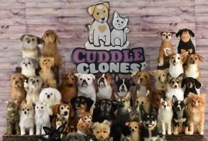 Cuddle Clones te ayuda a inmortalizar a tu mascota, descubre cómo