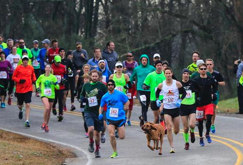 Este perro corrió accidentalmente medio maratón (y terminó en 7o lugar) - perrito-21k-3