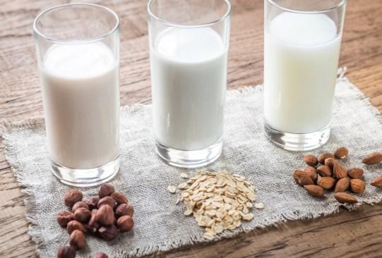 Esta máquina te ayudará a preparar leches vegetales rápidamente en casa - soyaelectric-leches-vegetales-2-300x203