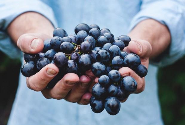 Abril es el mes del Malbec y esto es lo que tienes que saber sobre esta uva - malbec-3