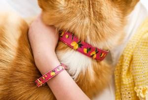 Combina el collar de tu mascota con un brazalete para ti y ayuda a una buena causa