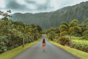 Transpórtate a Hawaii con esta playlist