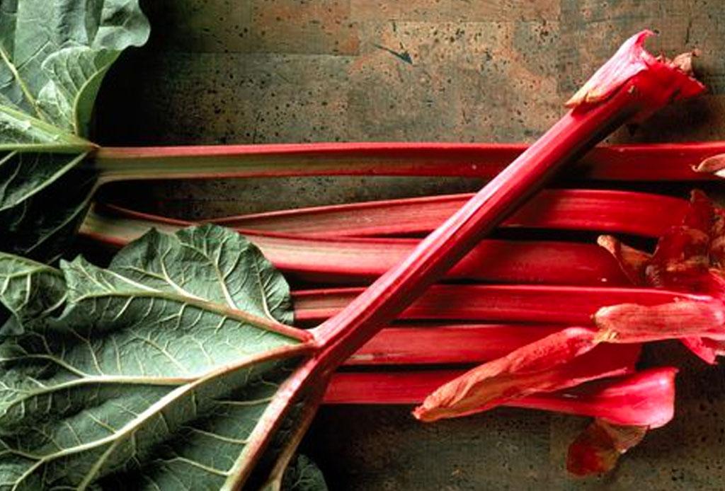Aprovecha la temporada y prepara este delicioso pie de ruibarbo - ruibarbo-pie-2-1024x694