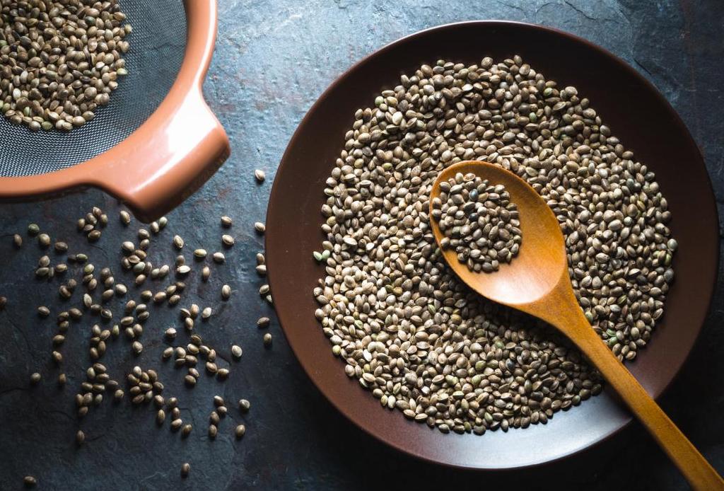 Las semillas de Hemp y todos sus beneficios