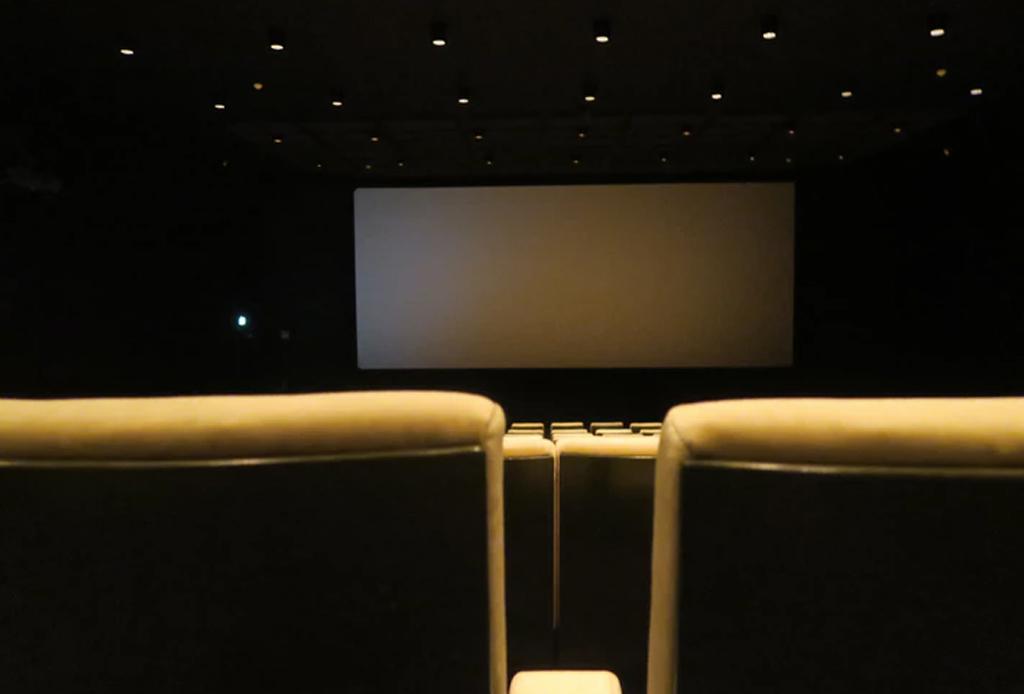 Todo lo que puedes encontrar en el Festival Internacional de Cine de Medio Ambiente en Guanajuato