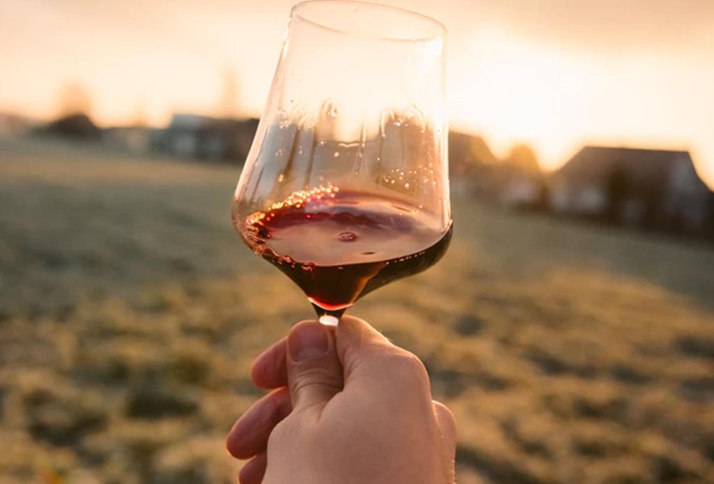 Un playlist para disfrutar dos placeres de la vida: comida y vino