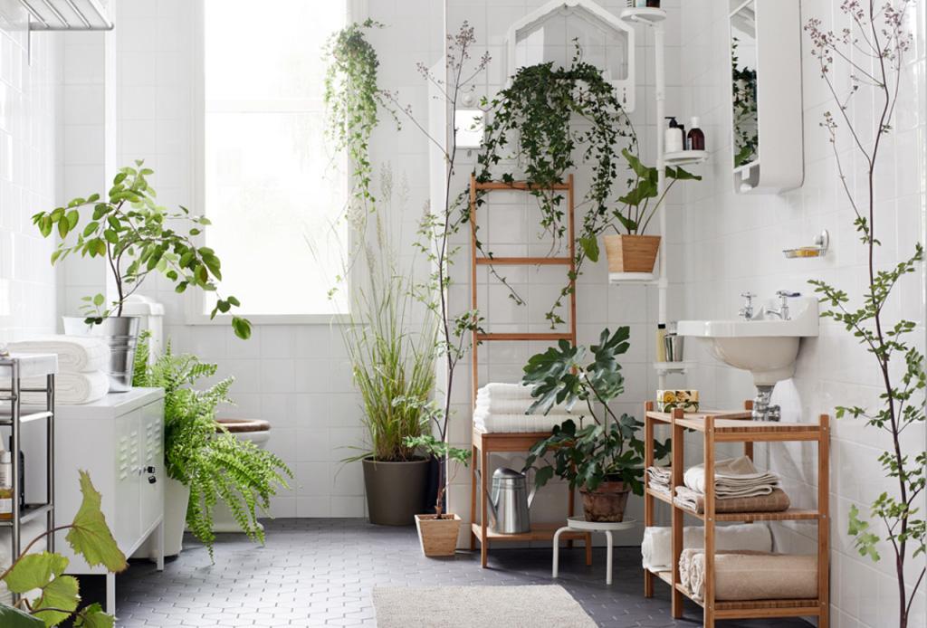 Así puedes hacer un detox completo para comenzar una nueva década - plantas-decoracion-bancc83o-1-1-1024x694