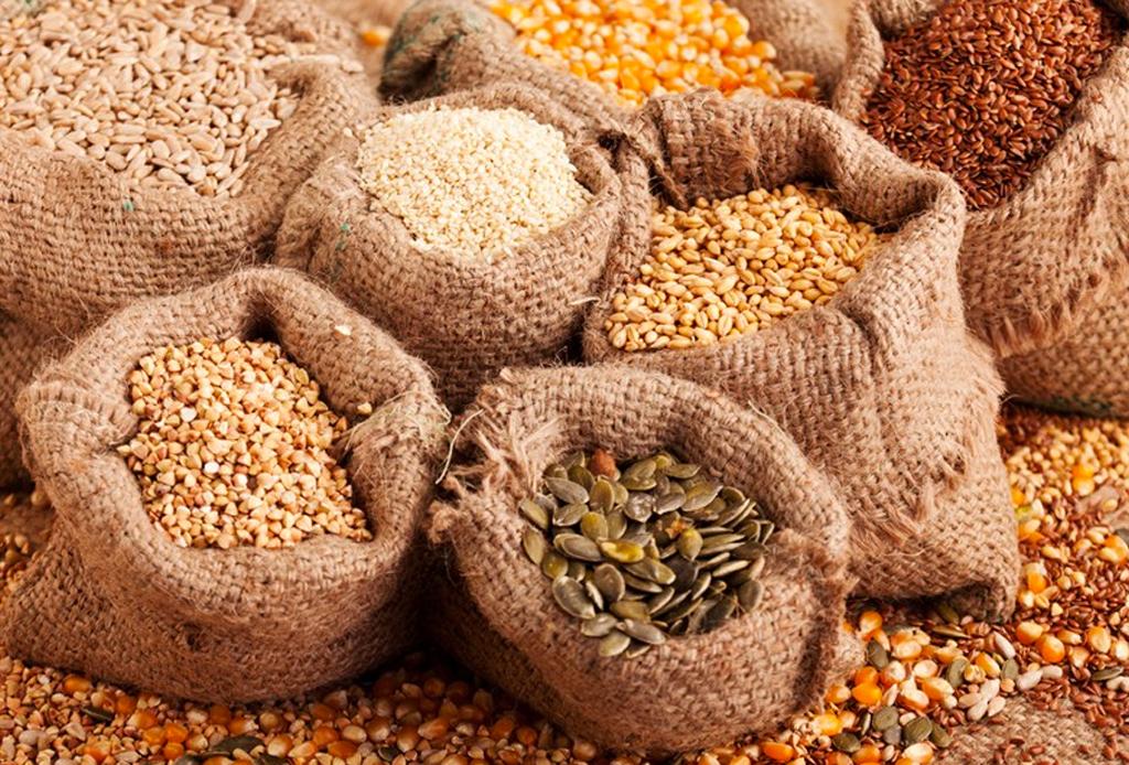¡No temas a las grasas! Checa las opciones que puedes tener en tu dieta - semillas-digestion-1024x694