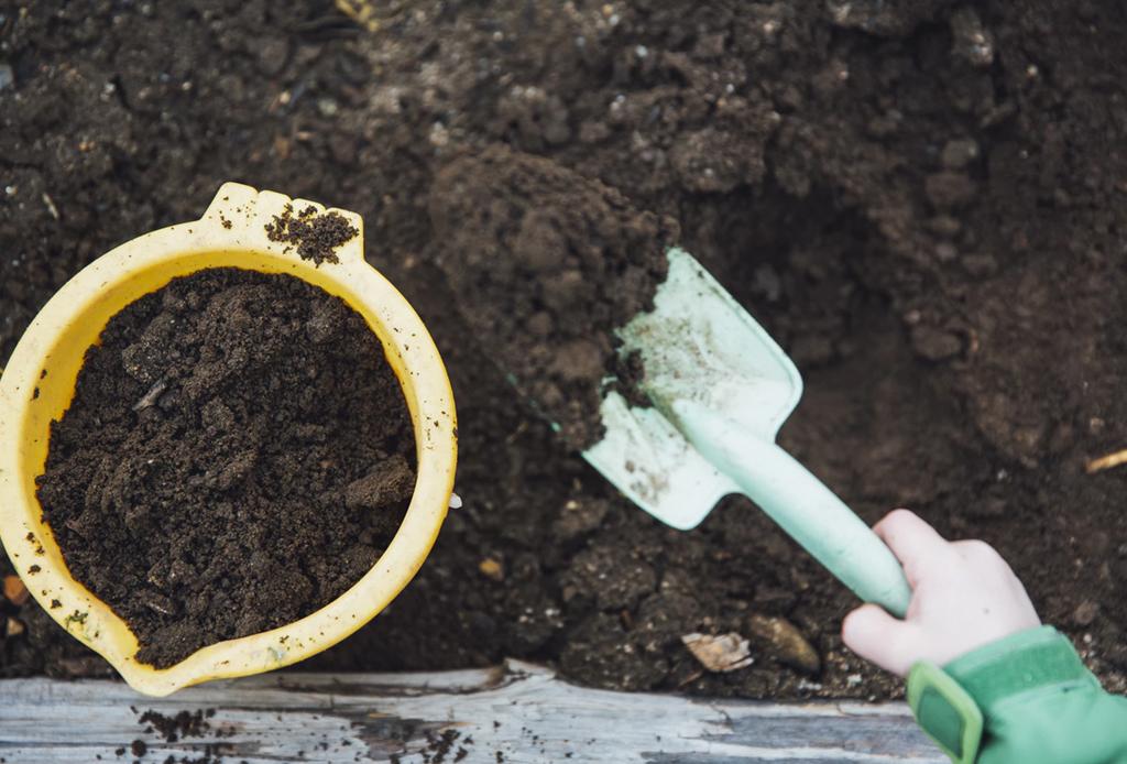 La jardinería puede ayudarte a mejorar tu salud física y mental