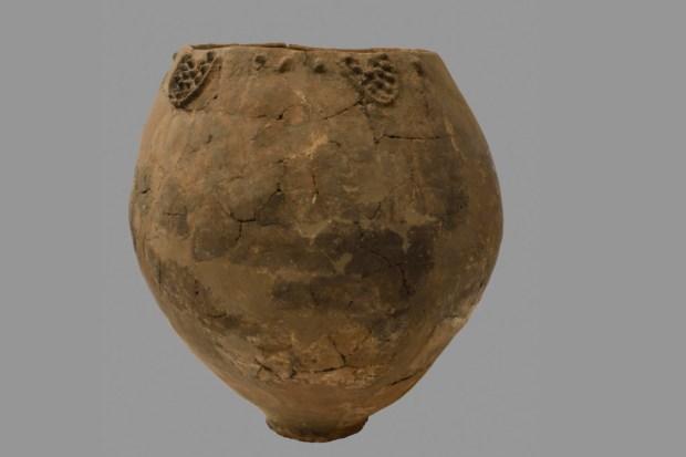 Estas son las bebidas más antiguas del mundo - vino-gregoriano