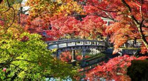 Los mejores lugares para visitar durante otoño