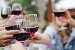 No te pierdas la próxima edición de Wine Circus Fest en Querétaro