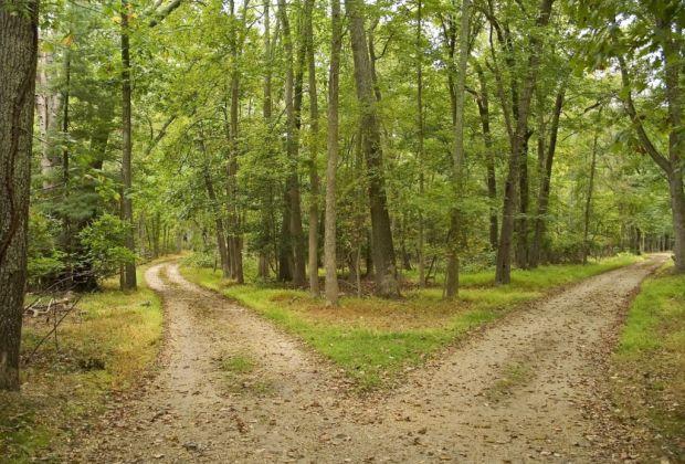 Lecciones de Nietzsche para entender la vida - caminos