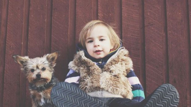 Cosas que debes considerar antes de darle una mascota a tus hijos - mascota-nincc83o
