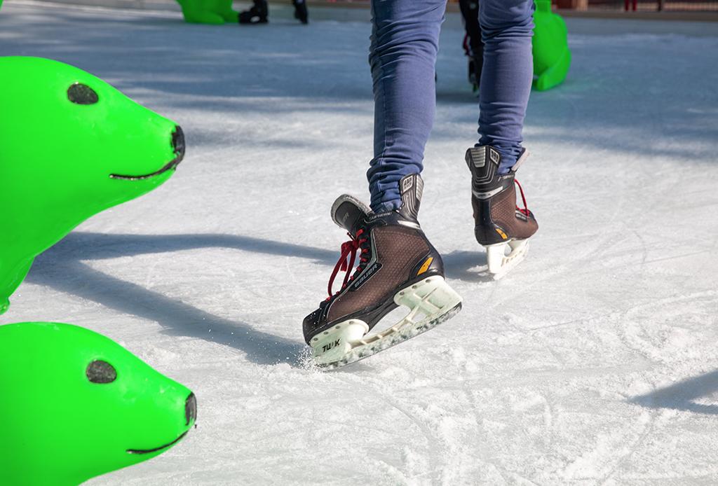 Pista de hielo Jardín Pushkin - pista-de-hielo-gnp-1