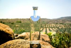 4 razones por las que deberías regalar Tequila Cosmos en estas fechas