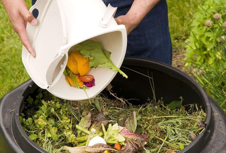Prepara fertilizantes caseros para mantener el verde de tus plantas - composta-fertilizante-casero