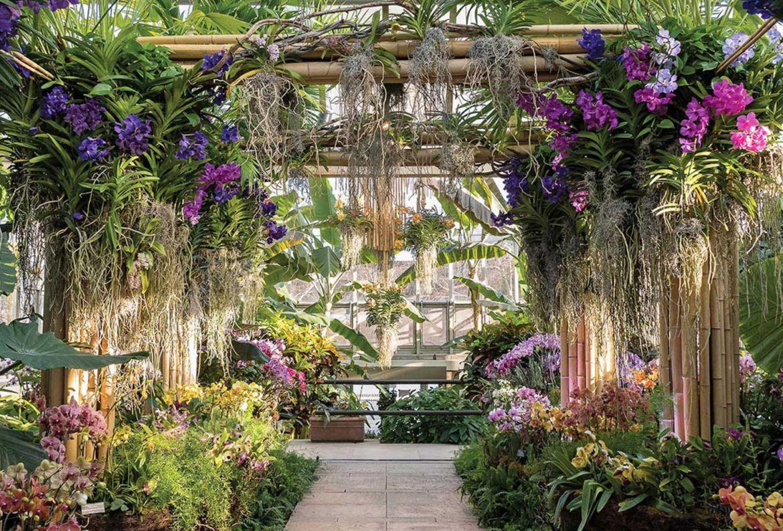 Los jardines botánicos más bonitos del mundo ¡tienes que visitarlos! - jardin-botanico-de-chicago