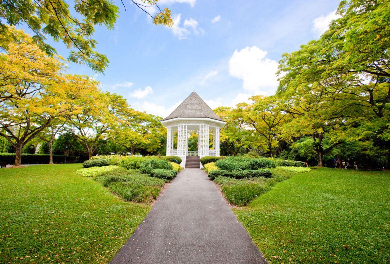 Los jardines botánicos más bonitos del mundo ¡tienes que visitarlos! - jardin-botanico-de-singapur