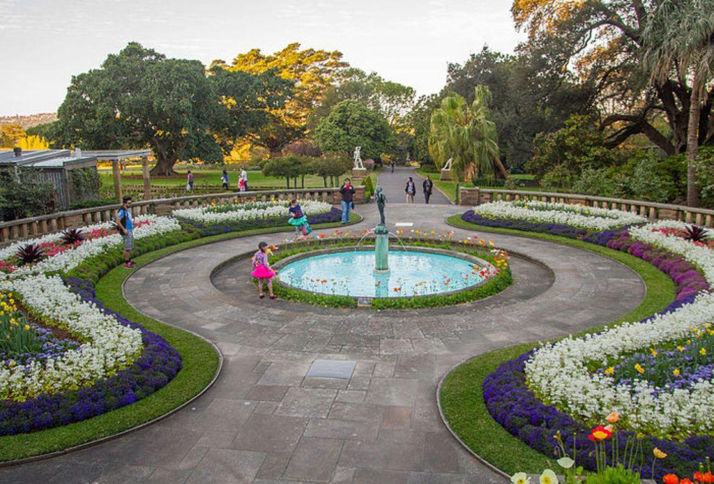 Los jardines botánicos más bonitos del mundo ¡tienes que visitarlos! - real-jardin-botanico-de-sidney
