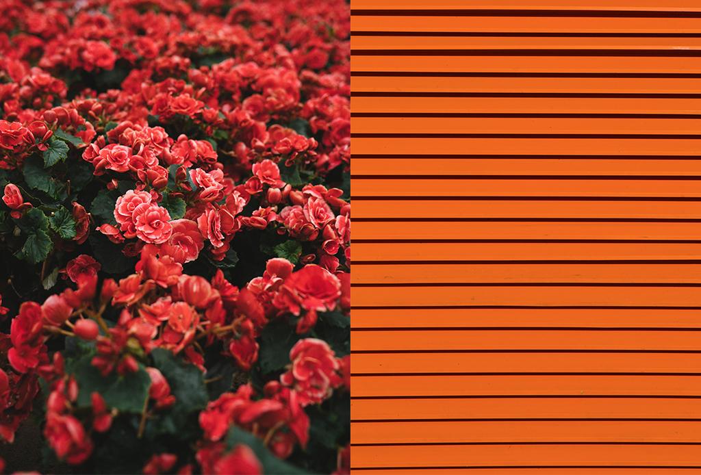 Vístete con estos colores para sentirte más feliz - colorimetria-3