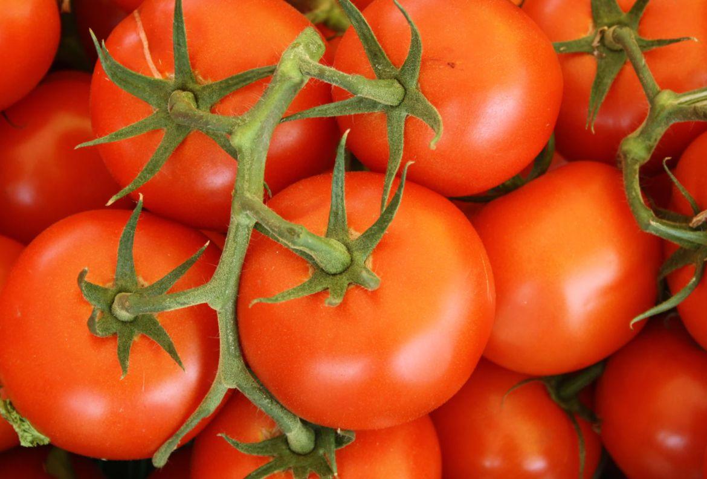 Si quieres hacer tu huerto casero, estas son las frutas y verduras más fáciles de cosechar - frutas-y-verduras-faciles-de-cosechar-jitomates