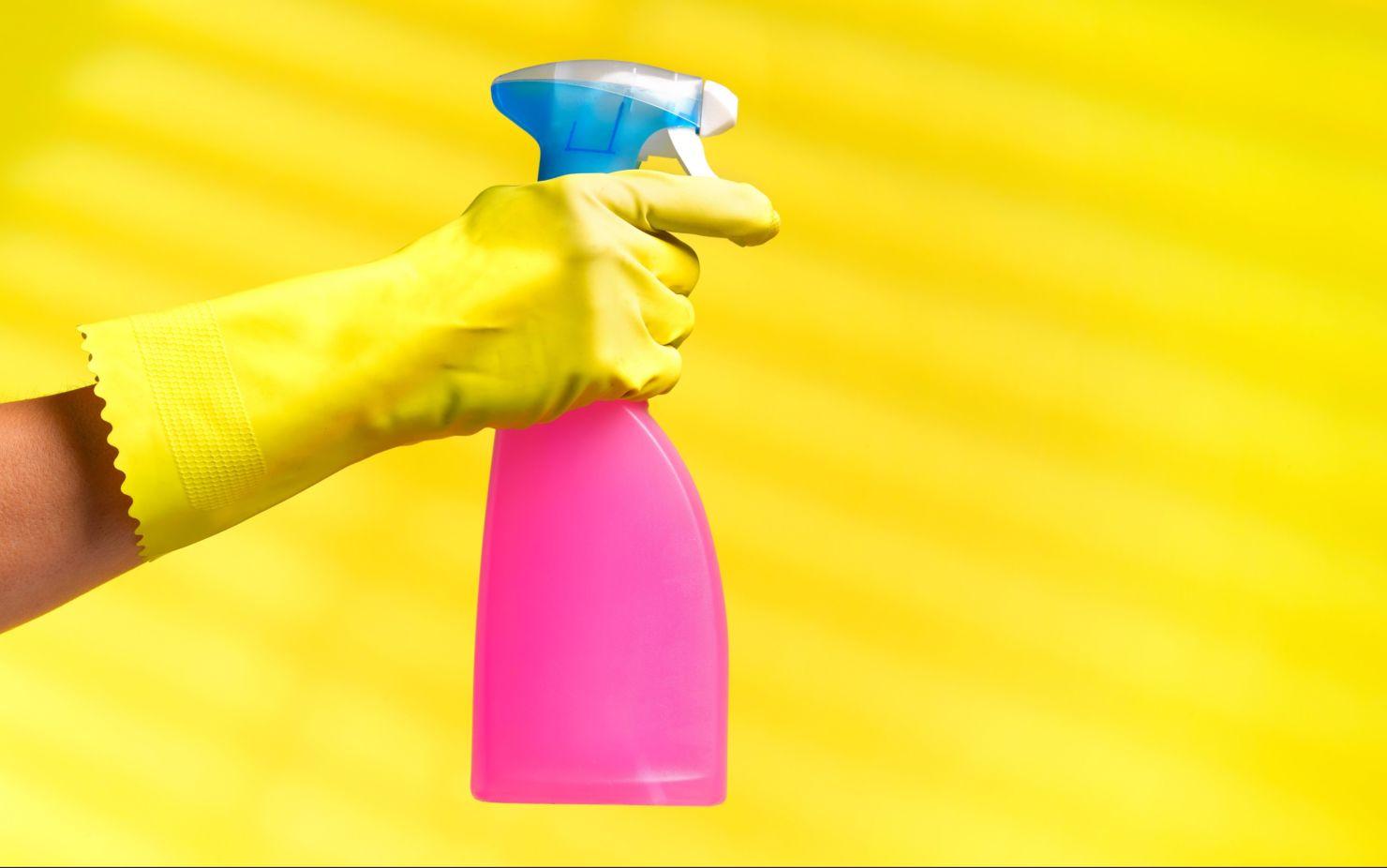 ¡Cuidado! tus productos de limpieza pueden lastimar a tus mascotas